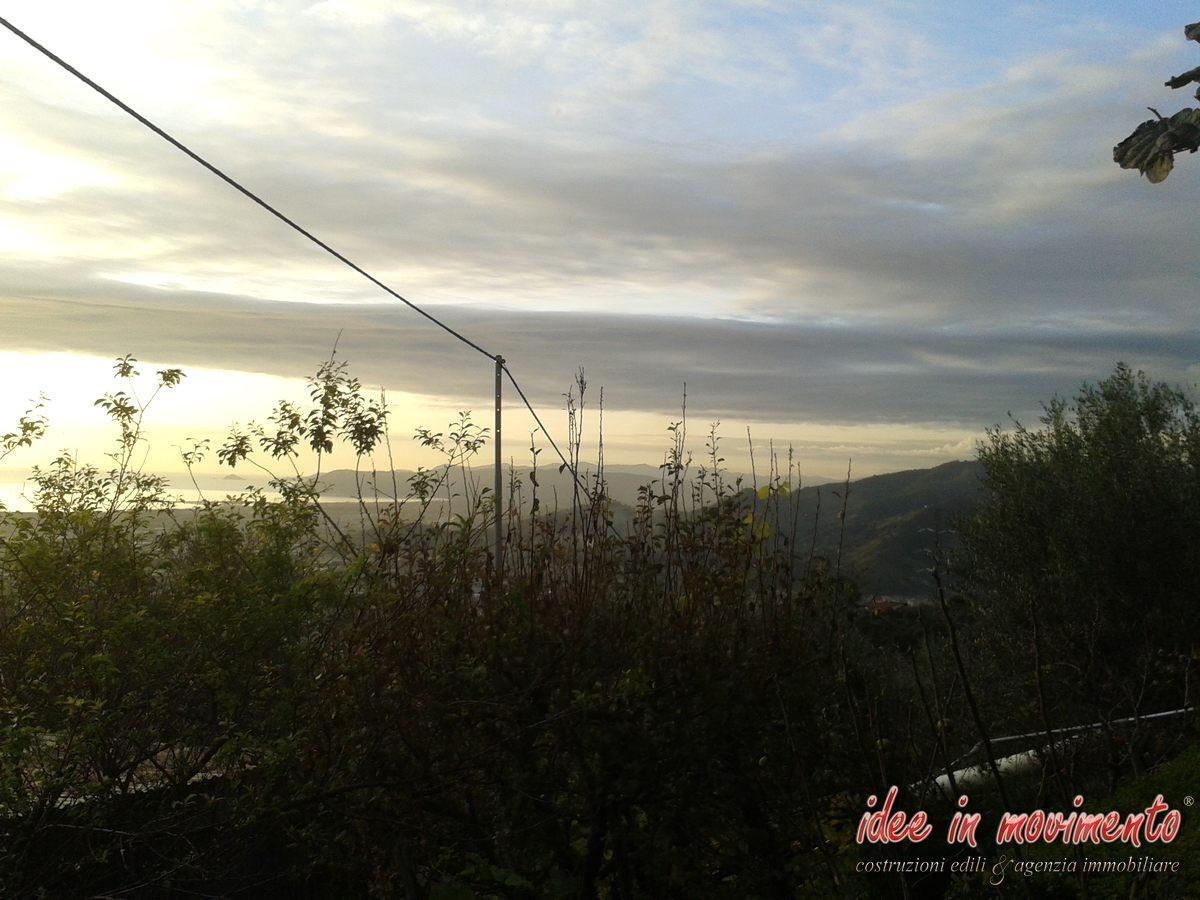 Foto 31/31 per rif. v1742
