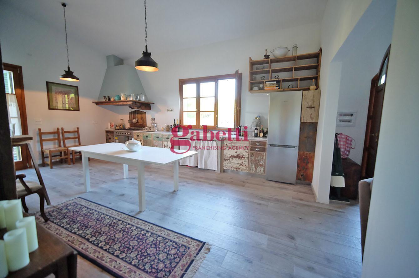 Viareggina in affitto a Pisa