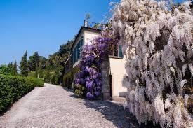 Edificio storico in vendita - Camaiore