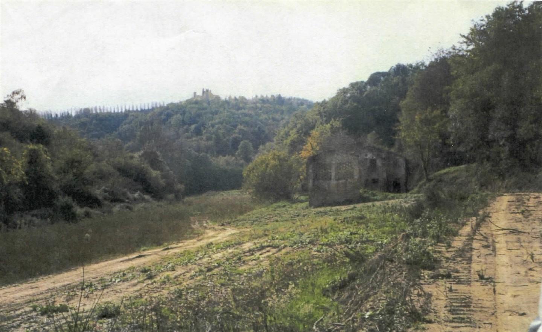 Foto 3/3 per rif. 1536