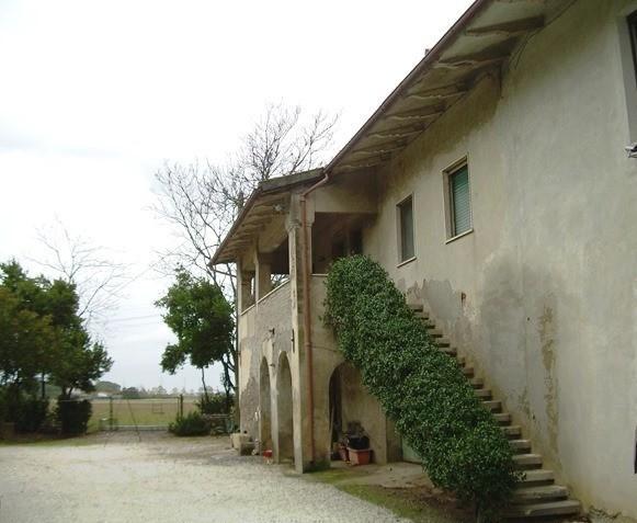 Azienda agricola in vendita a Cascina (PI)