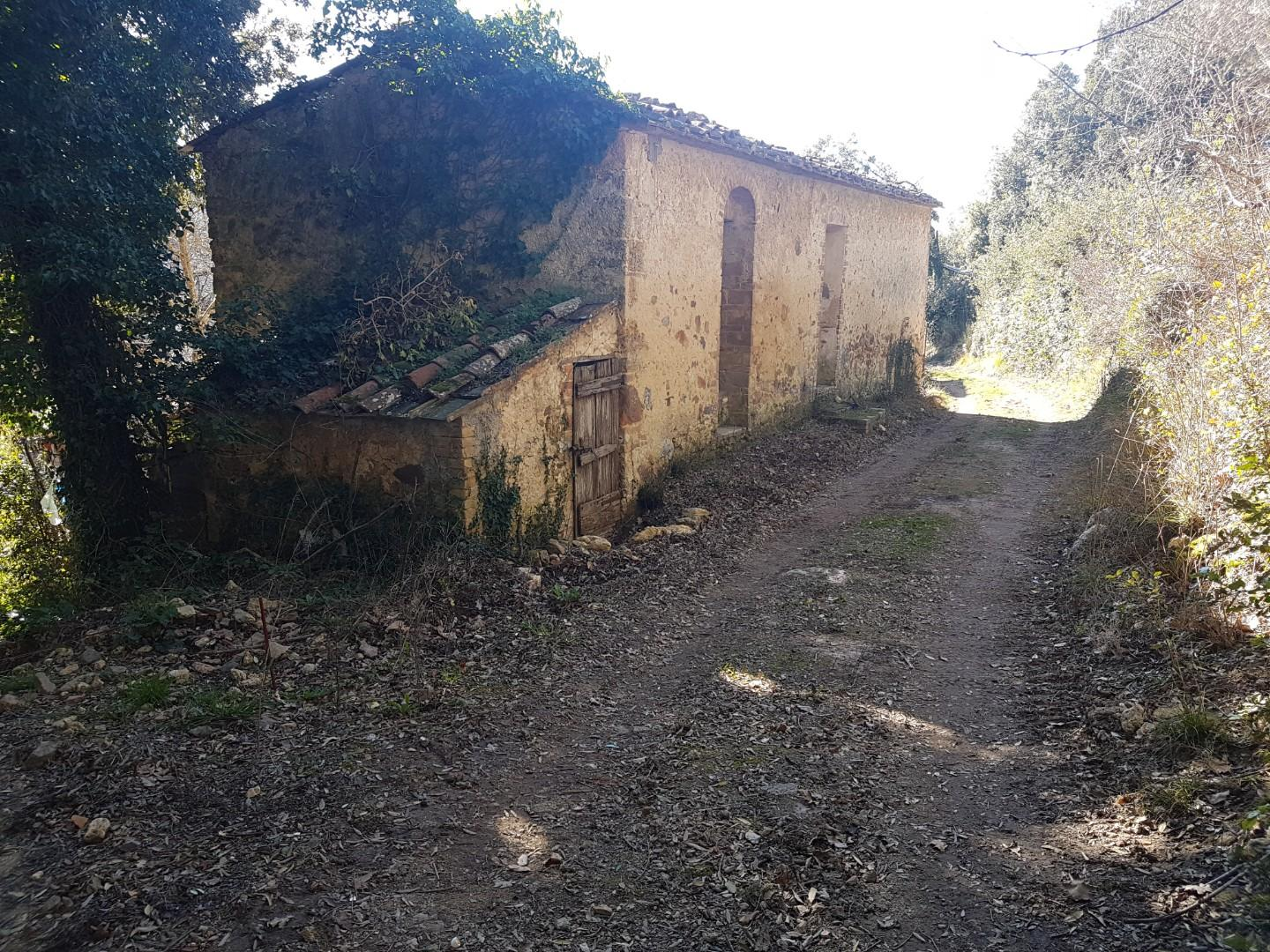 Farmhouse for sale in Monticiano (SI)
