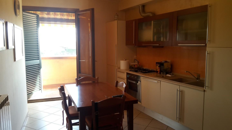 Appartamento in affitto a Castelfranco di Sotto (PI)
