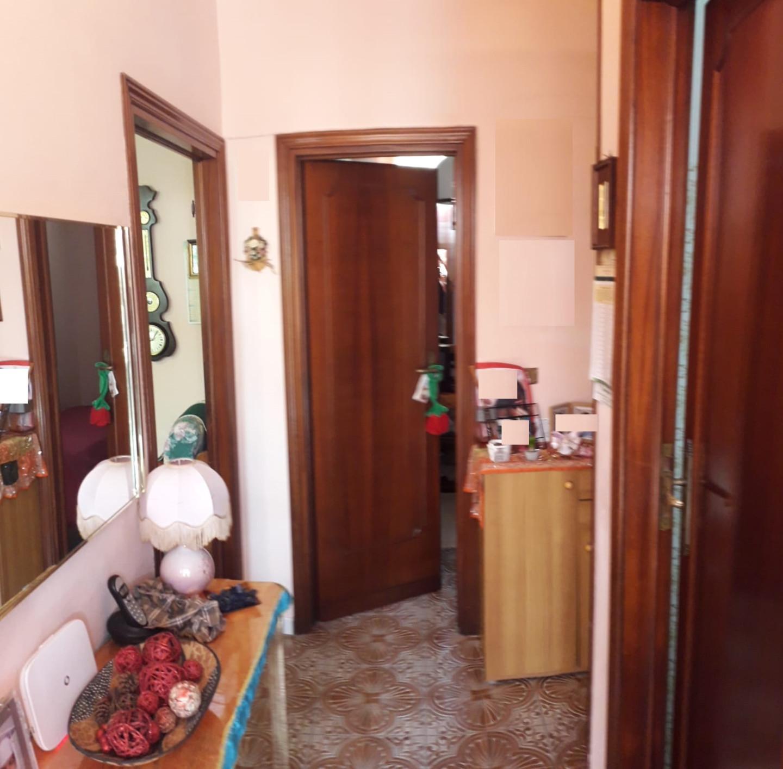 Viareggina in vendita - San Frediano A Settimo, Cascina