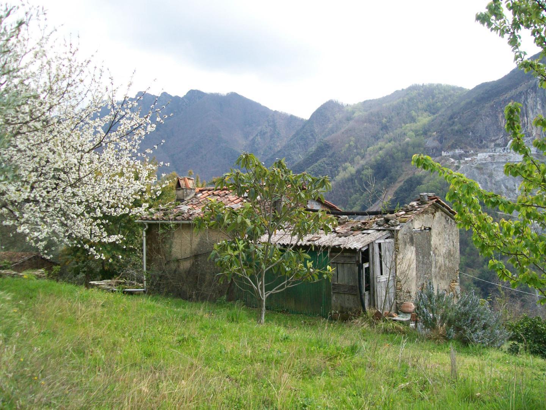Casa singola in vendita a Seravezza (LU)