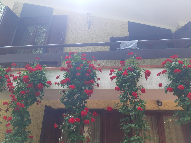 Villa singola in vendita, rif. II31V
