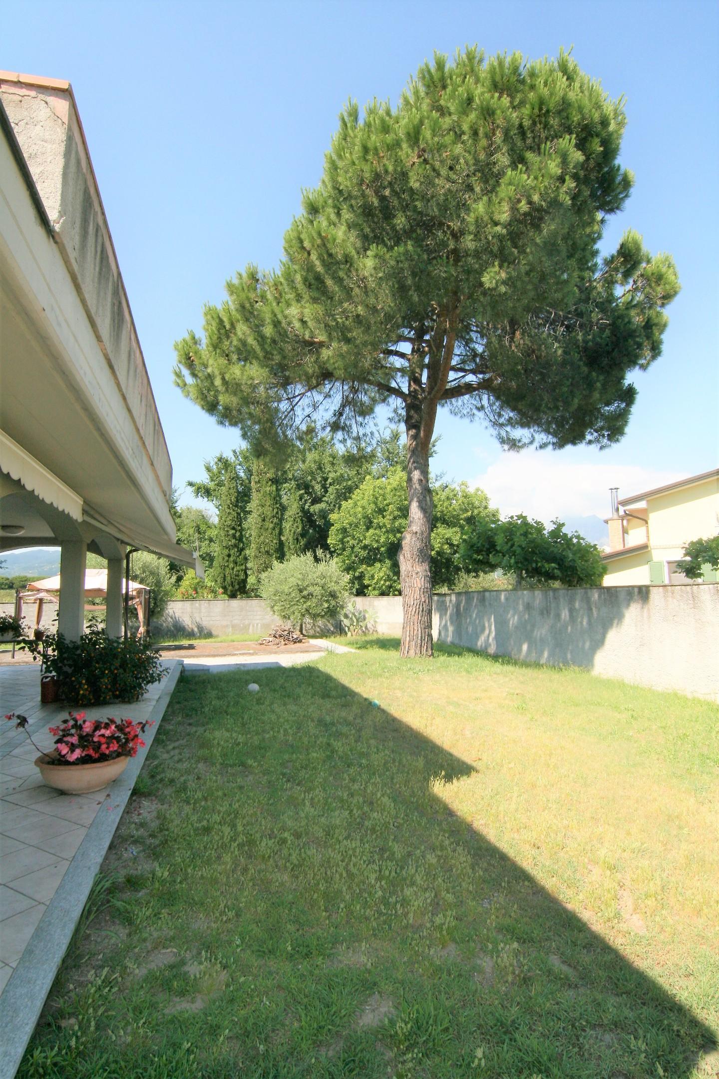 Villa singola - Marina Di Carrara, Carrara (5/28)