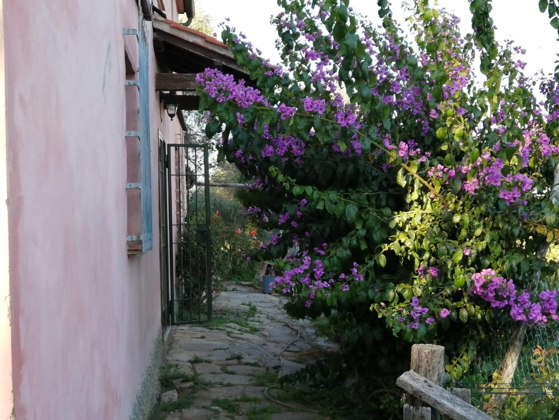 Casa singola in vendita a Vicopisano