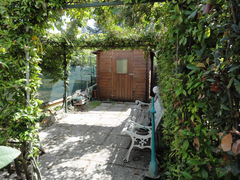 Appartamento in affitto a Crespina Lorenzana (PI)