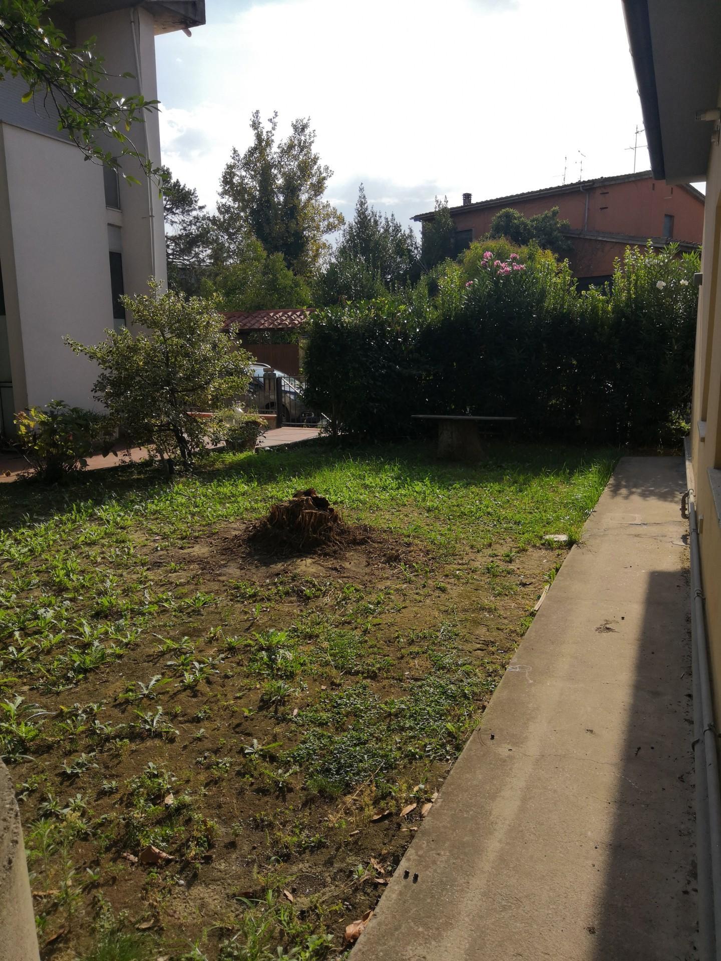 Viareggina in affitto residenziale a Cascina (PI)
