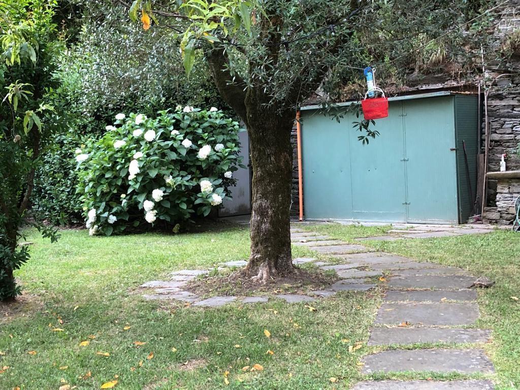 Soluzione Semindipendente in affitto a Stazzema, 5 locali, prezzo € 600 | CambioCasa.it