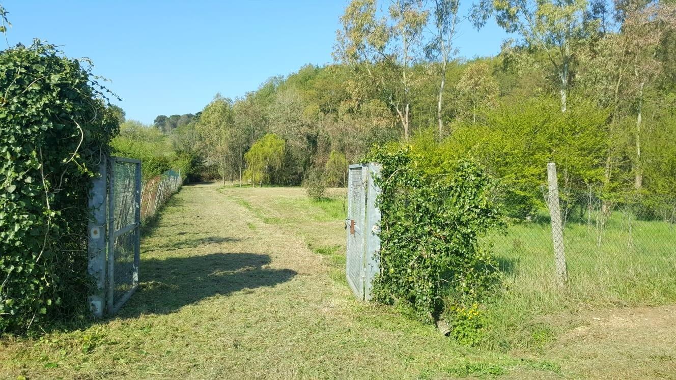 Terreno agricolo in vendita a Collesalvetti (LI)