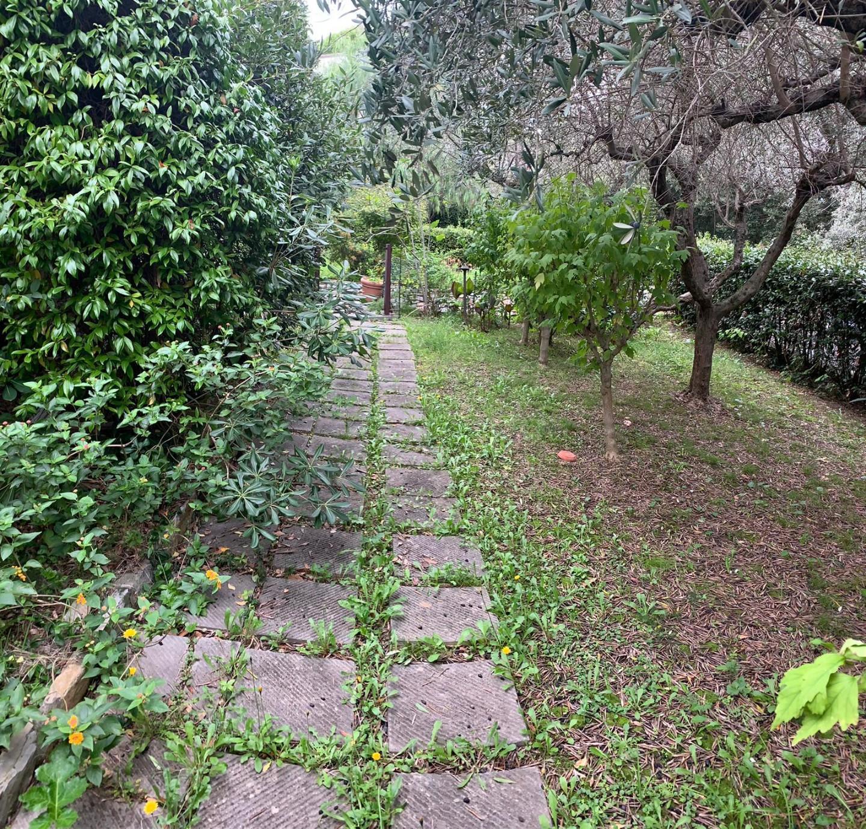 Villa singola - Castiglioncello, Rosignano Marittimo (4/13)