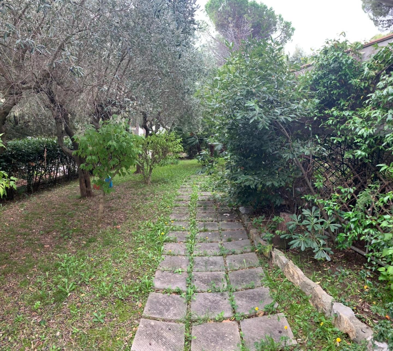 Villa singola - Castiglioncello, Rosignano Marittimo (7/13)