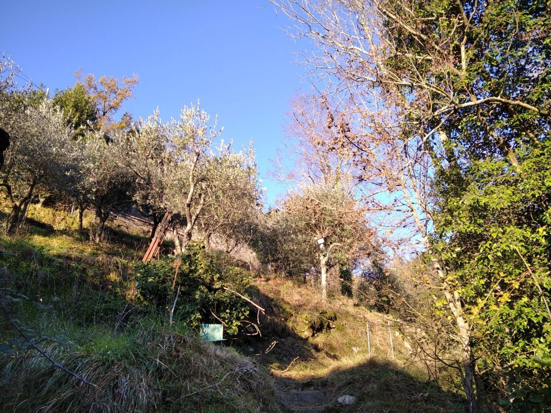 Foto 16/29 per rif. VGRA001