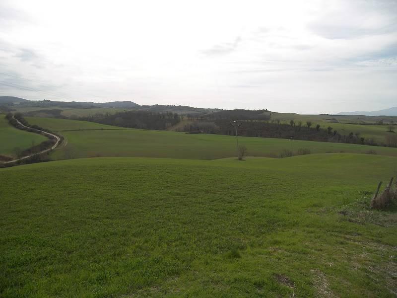Terreno agricolo in vendita a Asciano