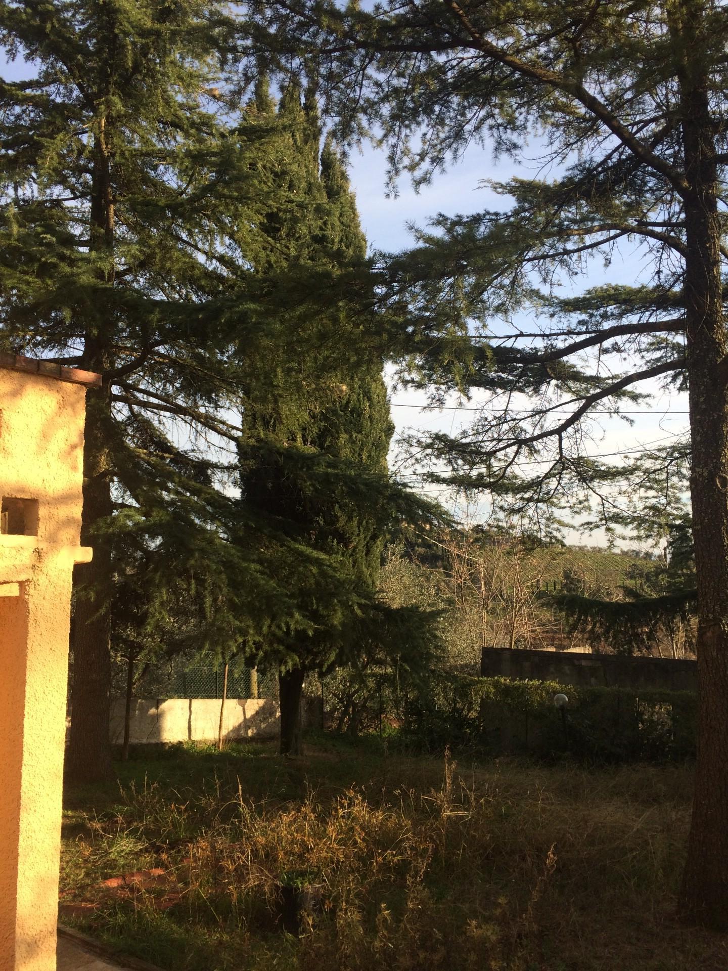 Villa singola in vendita, rif. 02427
