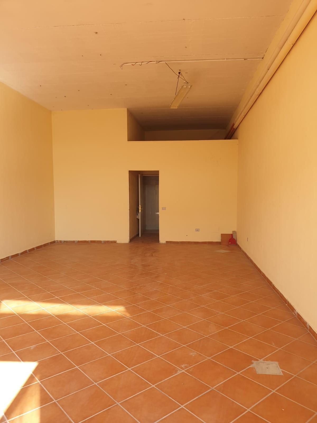Capannone artigianale in affitto - Calcinaia