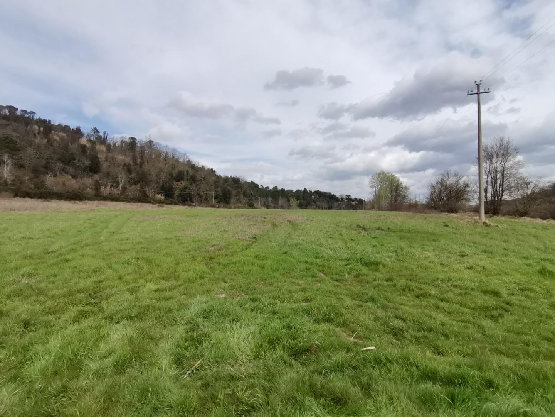 Terreno agricolo in vendita a Palaia (PI)