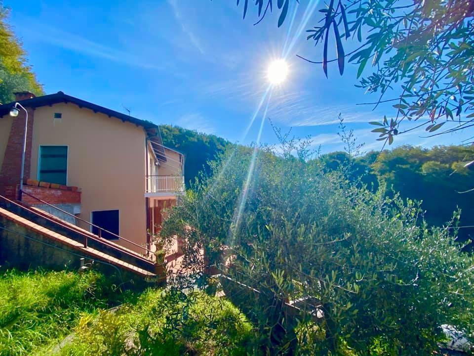 Villa singola - Lerici (7/40)