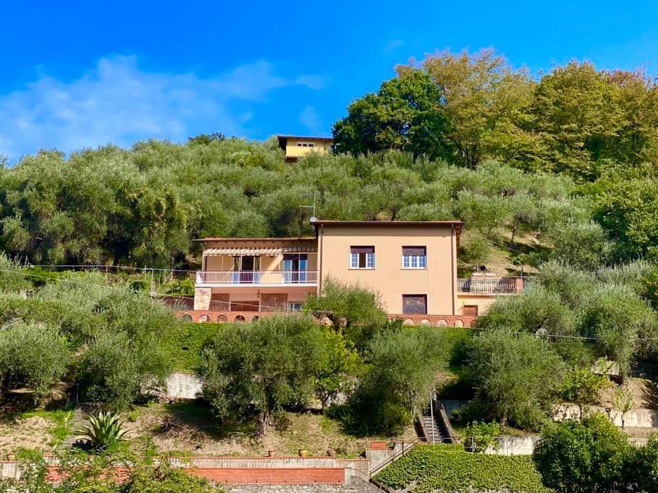 Villa singola - Lerici (3/40)