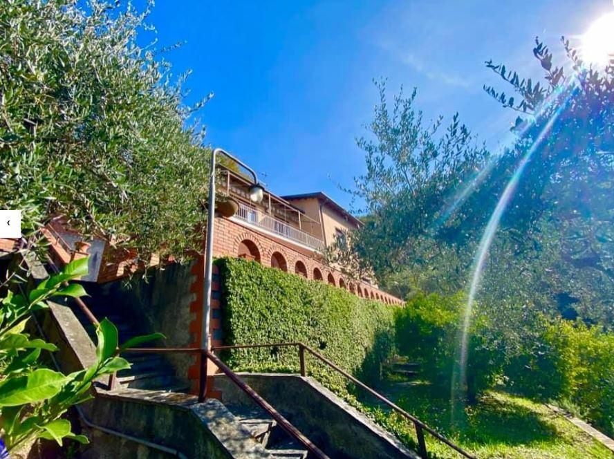 Villa singola - Lerici (38/40)