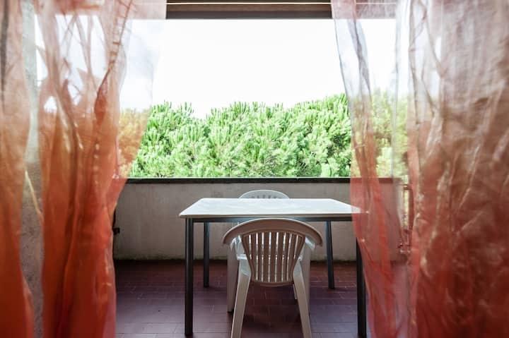 Appartamento in affitto vacanze a Vada, Rosignano Marittimo (LI)