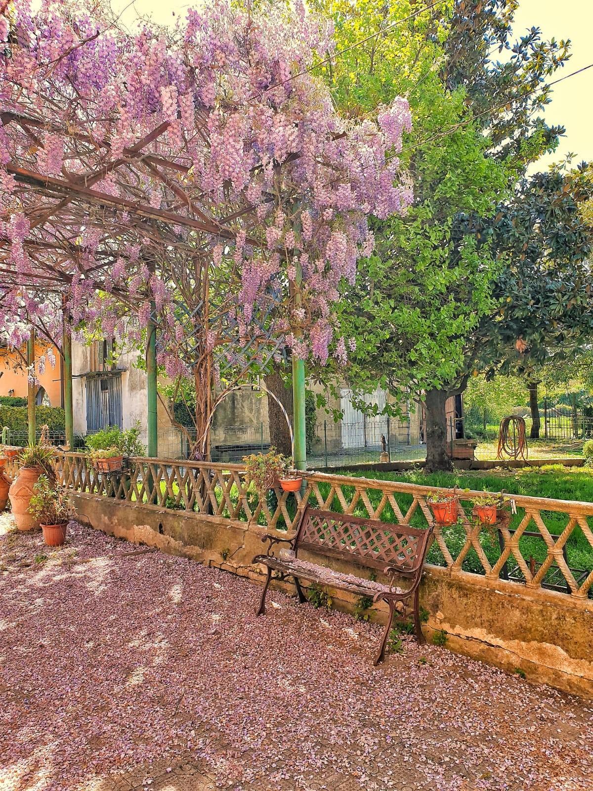 Edificio storico in vendita a San Frediano A Settimo, Cascina (PI)