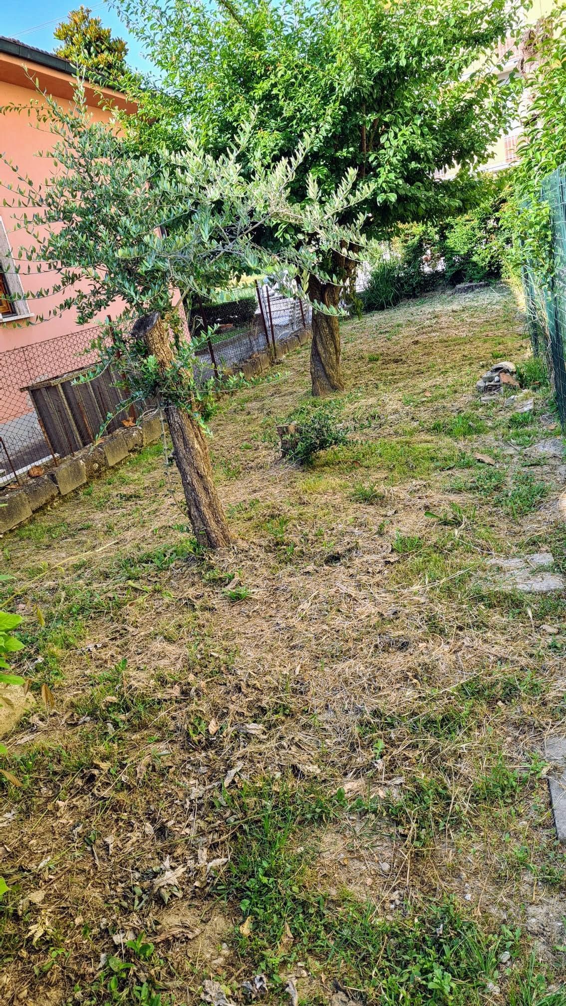 Appartamento in affitto - San Pierino, Fucecchio