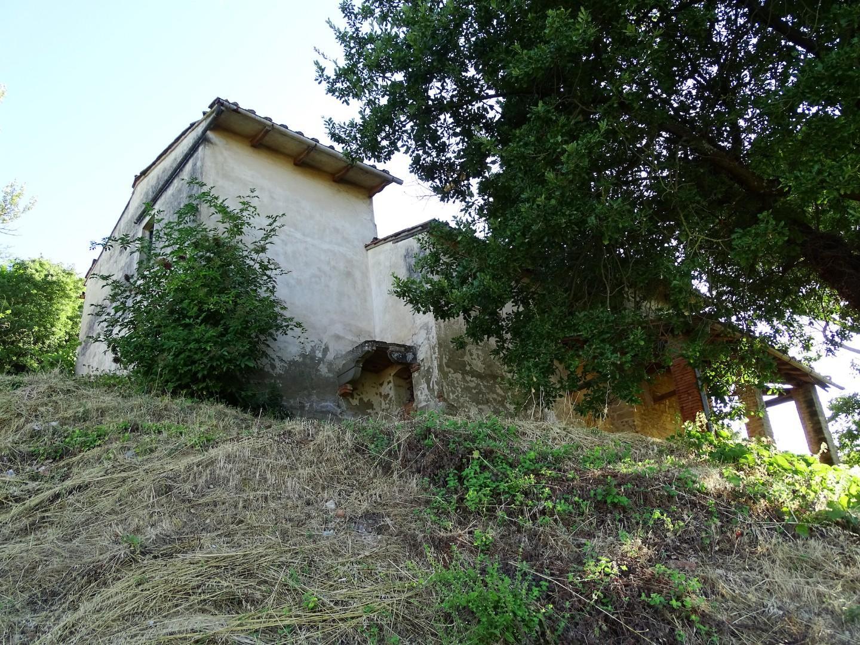 Colonica - San Miniato (11/17)
