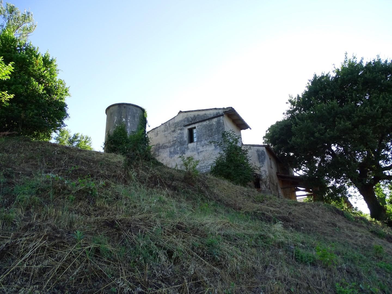 Colonica - San Miniato (9/17)