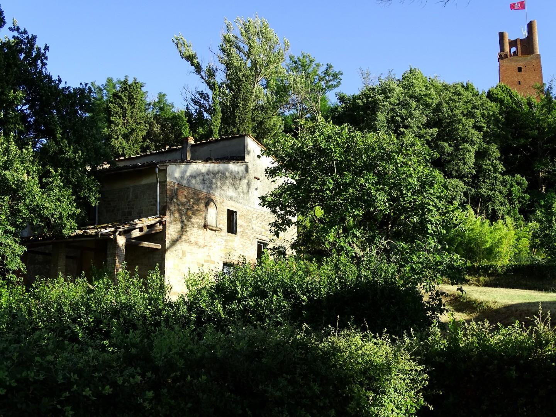 Colonica - San Miniato (2/17)