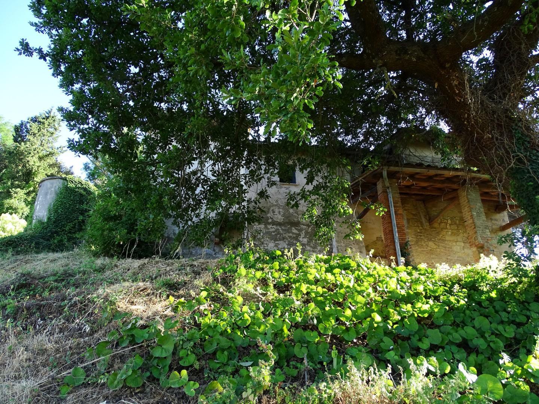 Villa singola - San Miniato (25/39)