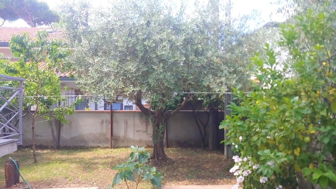 Porzione di casa in vendita a Camaiore (LU)