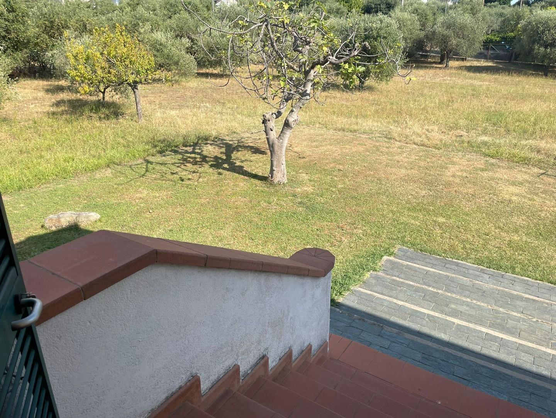 Foto 10/10 per rif. se261
