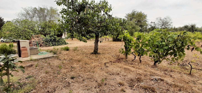 Annesso agricolo in vendita, rif. 44