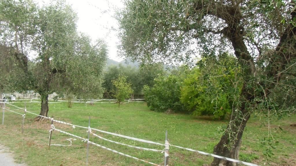 Terreno Edificabile Residenziale in vendita a Seravezza, 9999 locali, prezzo € 200.000 | CambioCasa.it