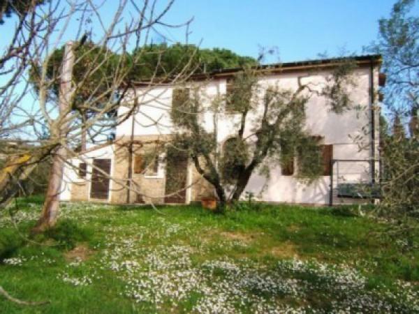 Rustico/Corte in vendita a Cecina (LI)