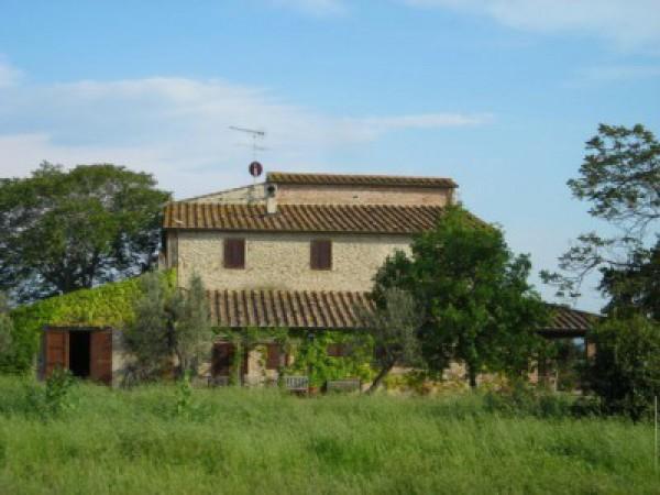 Rustico/Corte in vendita a Bibbona (LI)
