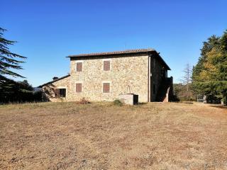 Azienda agricola in vendita a Murlo