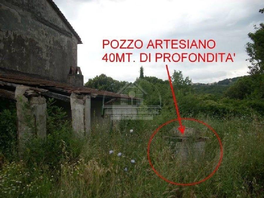 Colonica a Monteverdi Marittimo (3/5)