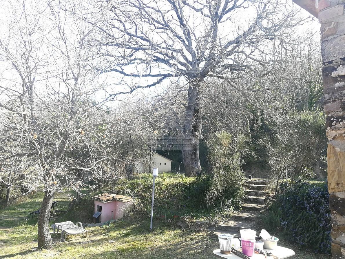 Colonica a Monterotondo Marittimo (2/5)