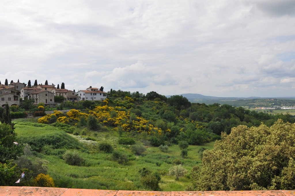 Villa singola a Casole d'Elsa (2/5)