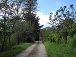Villa singola a Fucecchio (3/5)