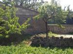 Terratetto a Castiglione d'Orcia (1/2)