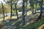 Villa singola a Marliana (4/5)