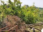 Casa singola a Casciana Terme Lari (3/5)