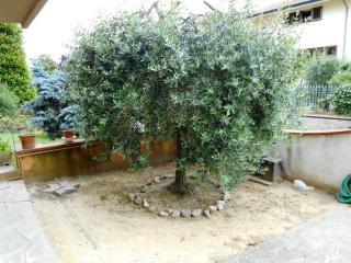 Appartamento a Castelfranco di Sotto (2/5)