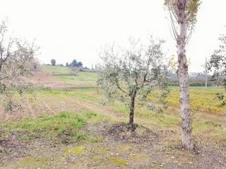 Terratetto a Casciana Terme Lari (4/5)
