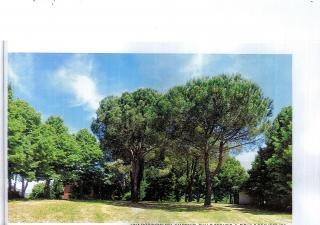 Villa singola a Palaia (5/5)